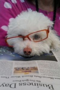 Louie reads The Times with me in the morning.