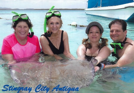 Fab four stingray